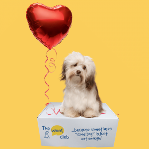 Valentine's Box for Dogs