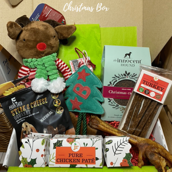 Woof Box Christmas Box for dogs