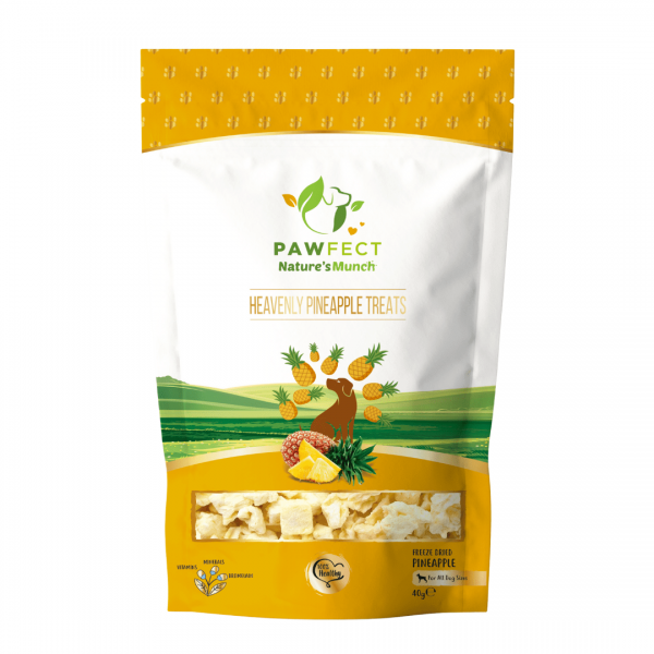 Image shows a packet of Pawfect Foods Pineapple dog treats.