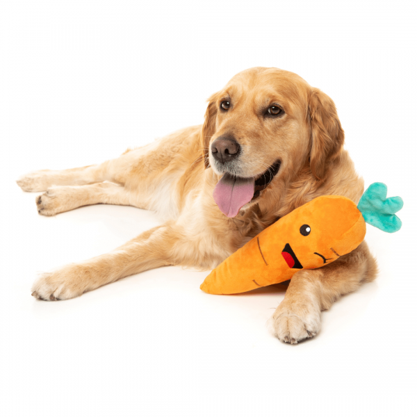 dog with carrot dog toy