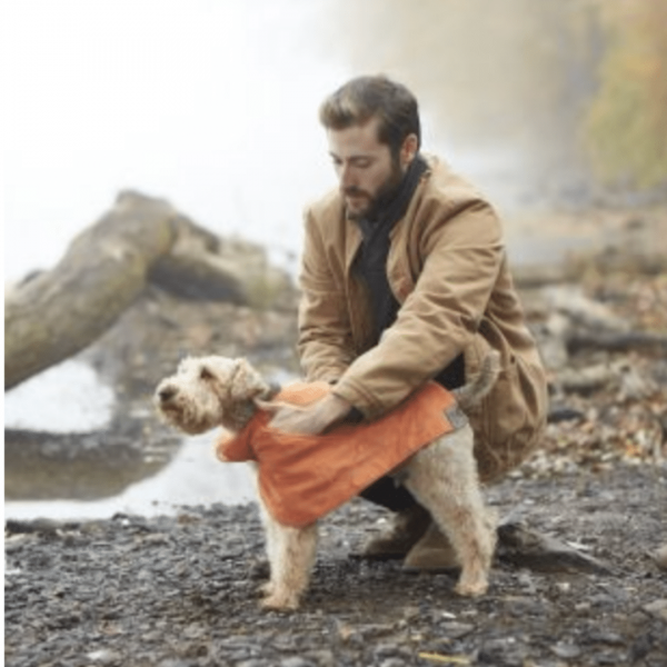 Man drying dog in cape towel