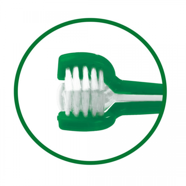 Triple-headed Toothbrush for dogs