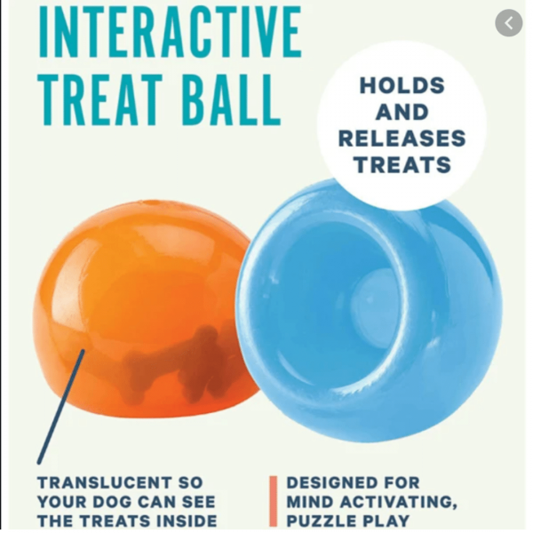 Interactive Dog Toy