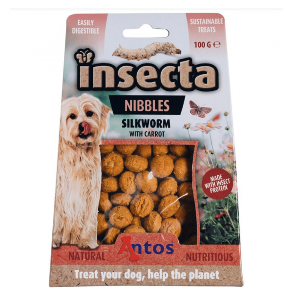Insect Treats for Dogs