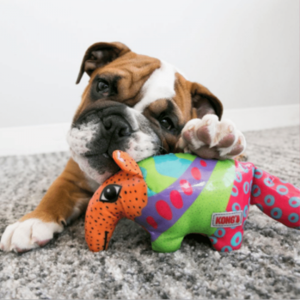 Ultra-Durable Dog Toy