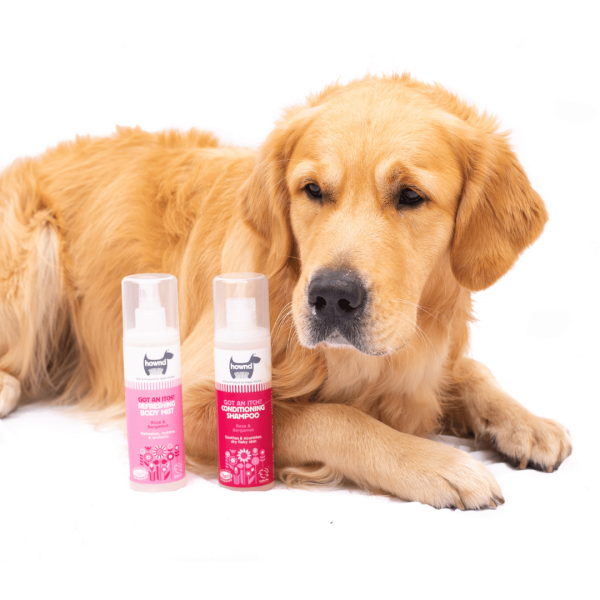 Soothing Spray for Dogs
